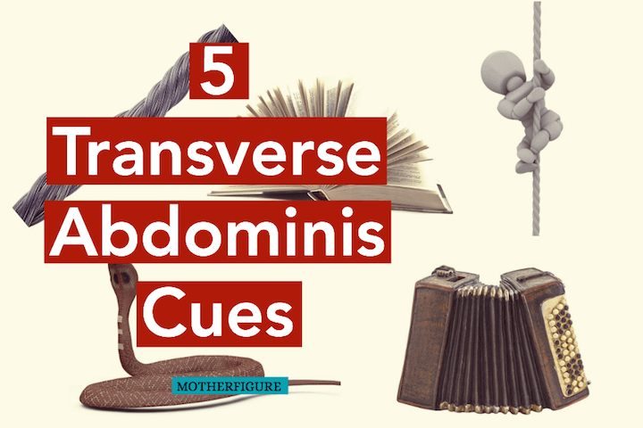 5 Transverse Abdominis Cues